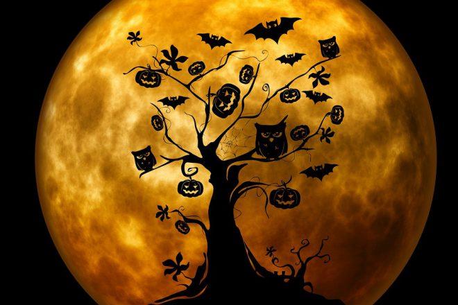 Gruselgedicht bei BeraTina - Foto Pixabay Gold Baum Eule Fledermaus
