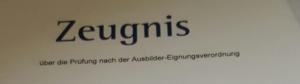 Über die Schreibkompetenzen bei den Schülern Dietmar Weigel Martina Decker